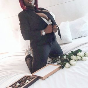 Demy outcall escort in Harper Woods MI